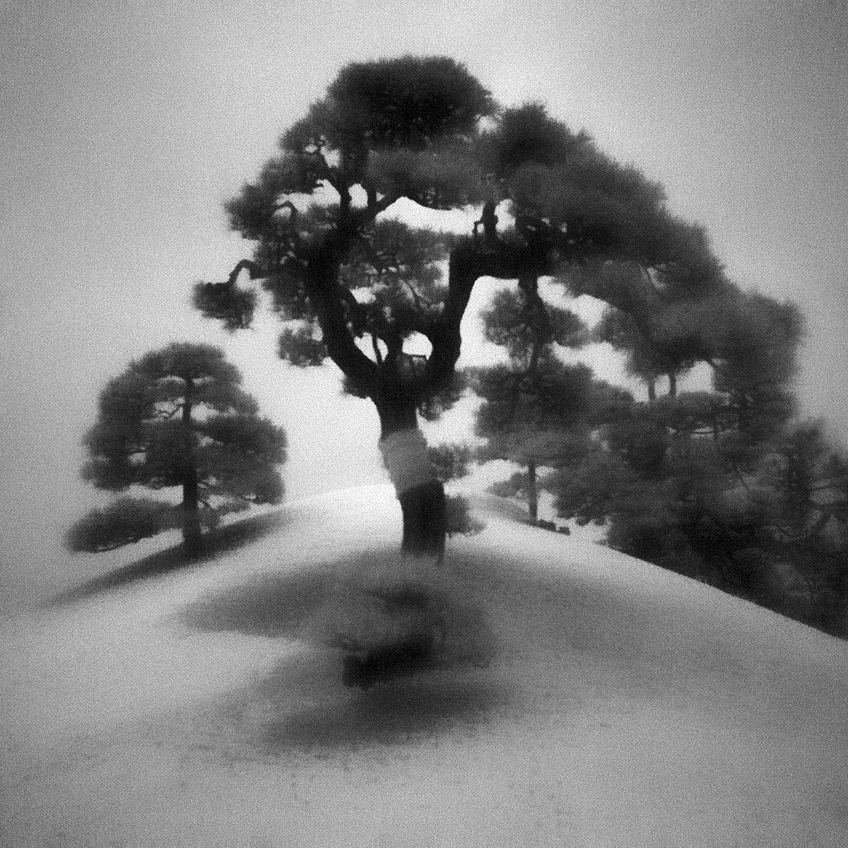 Toshiya Watanabe, Somewhere not Here